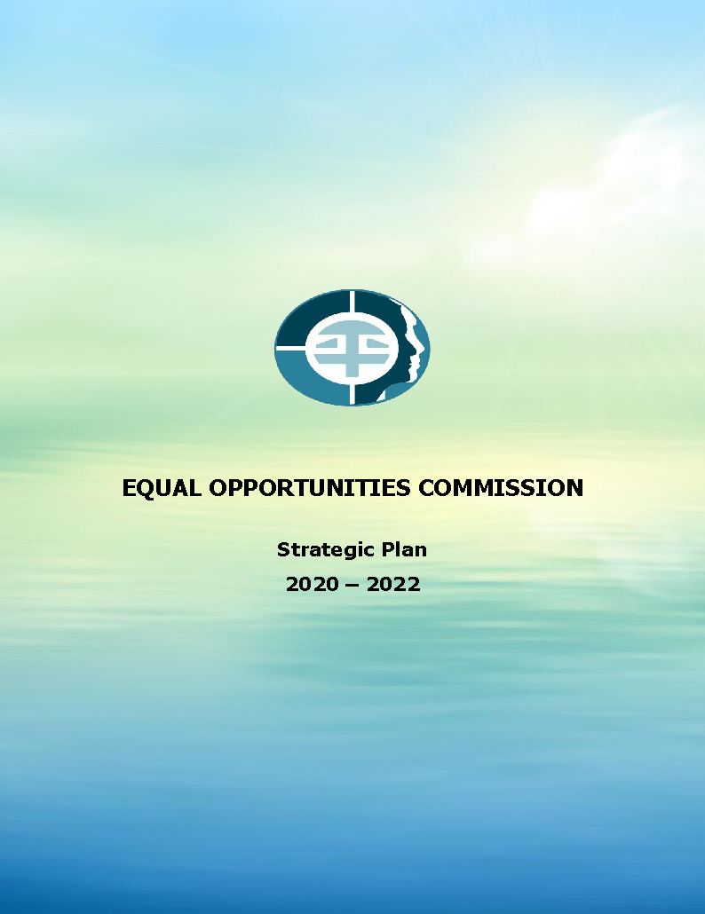 Click and open Strategic Plan 2020
